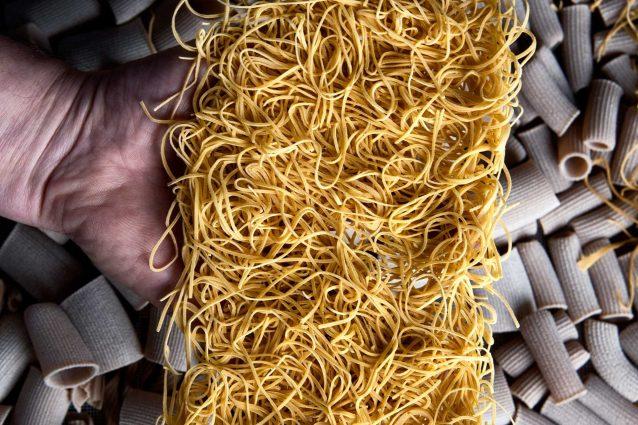 fieno di canapina fanelli pasta