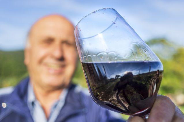 cantine aperte in vendemmia degustazione vino rosso