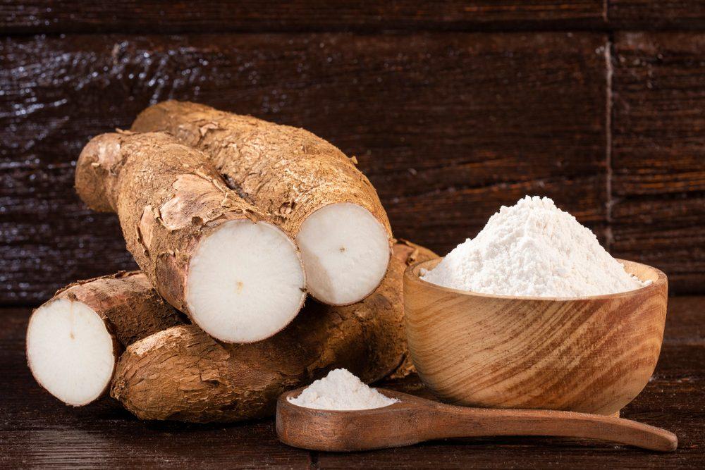 Cassava, manioca o yuca: la pianta che sfama il Sud America è l'ingrediente del futuro