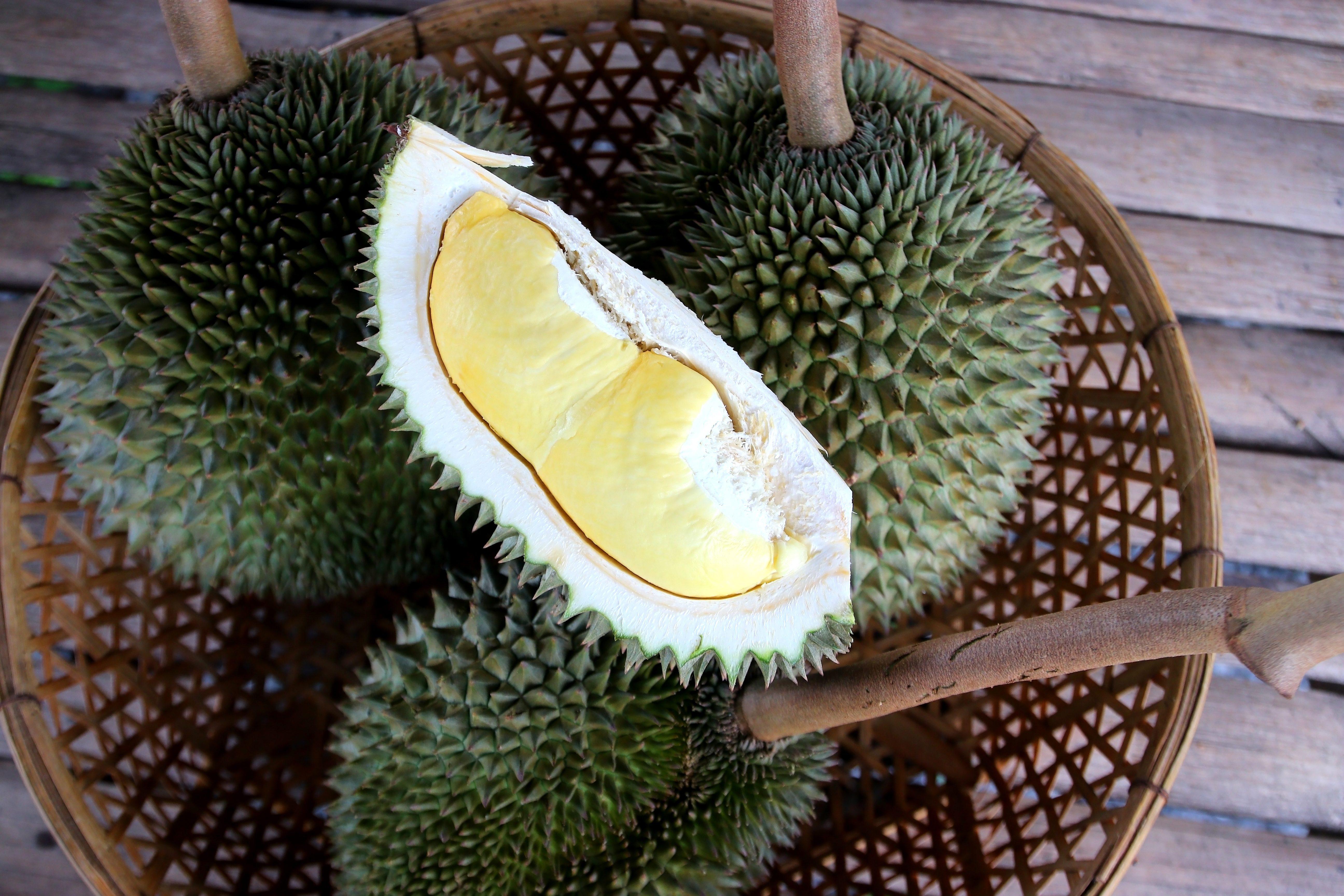 Durian: cos'è il frutto più puzzolente, ma più amato, dell'Asia