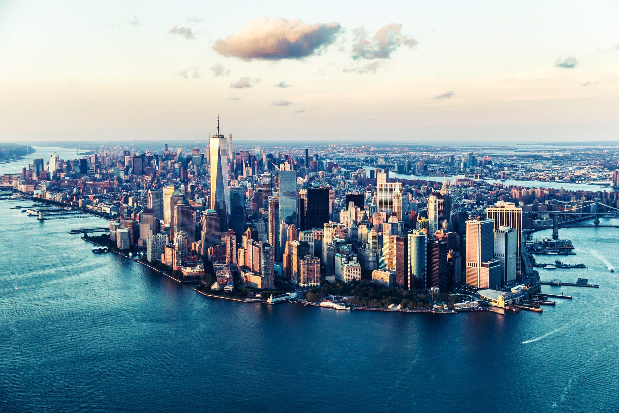 new-york-ostriche