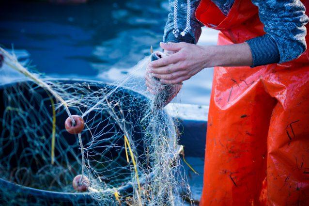 pesca pescatore reti