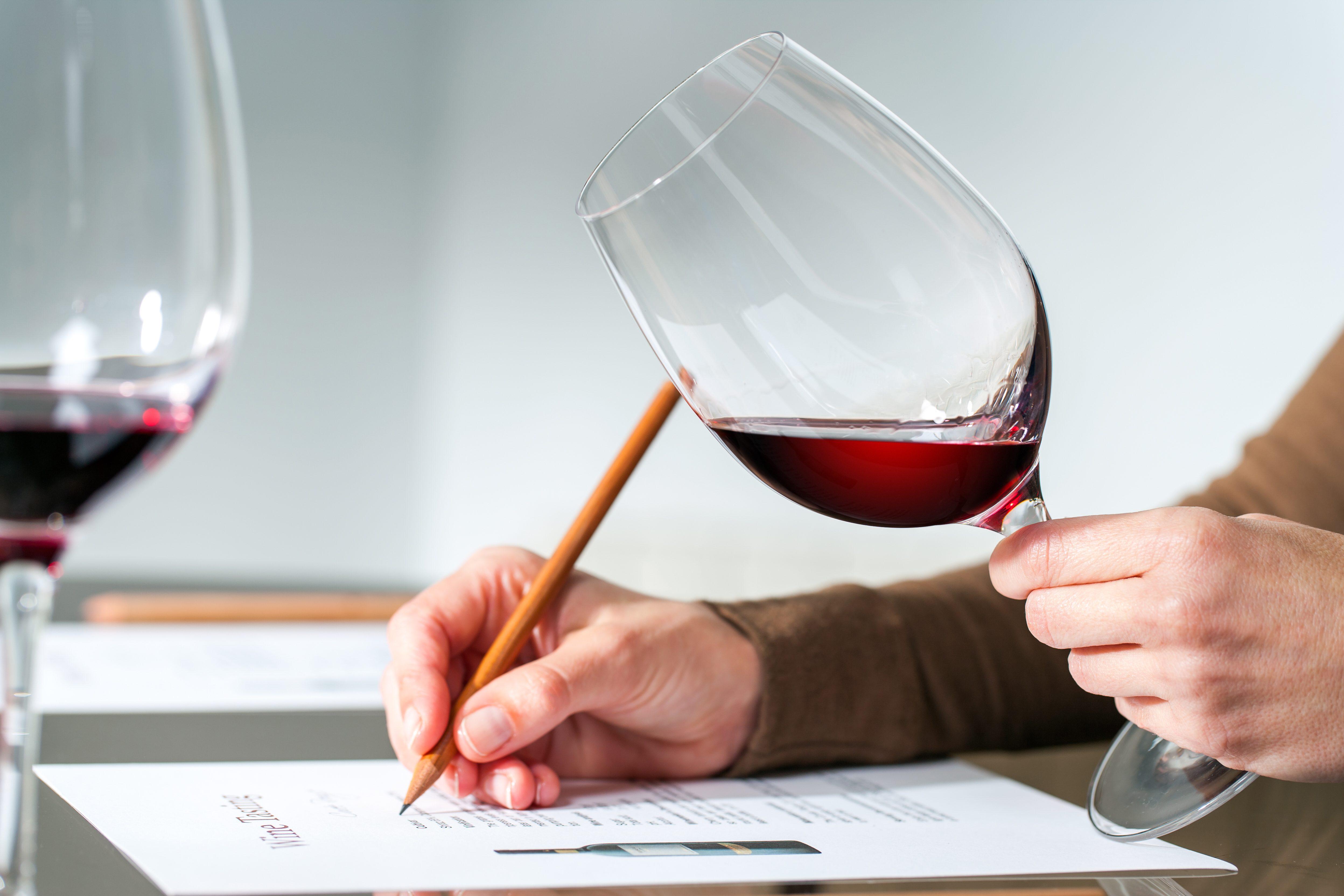Il vino diventa materia di studio nelle scuole superiori